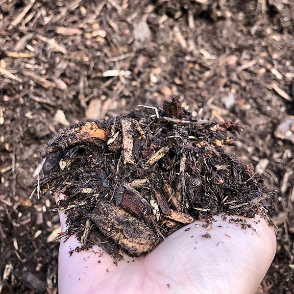 Forest floor mulch